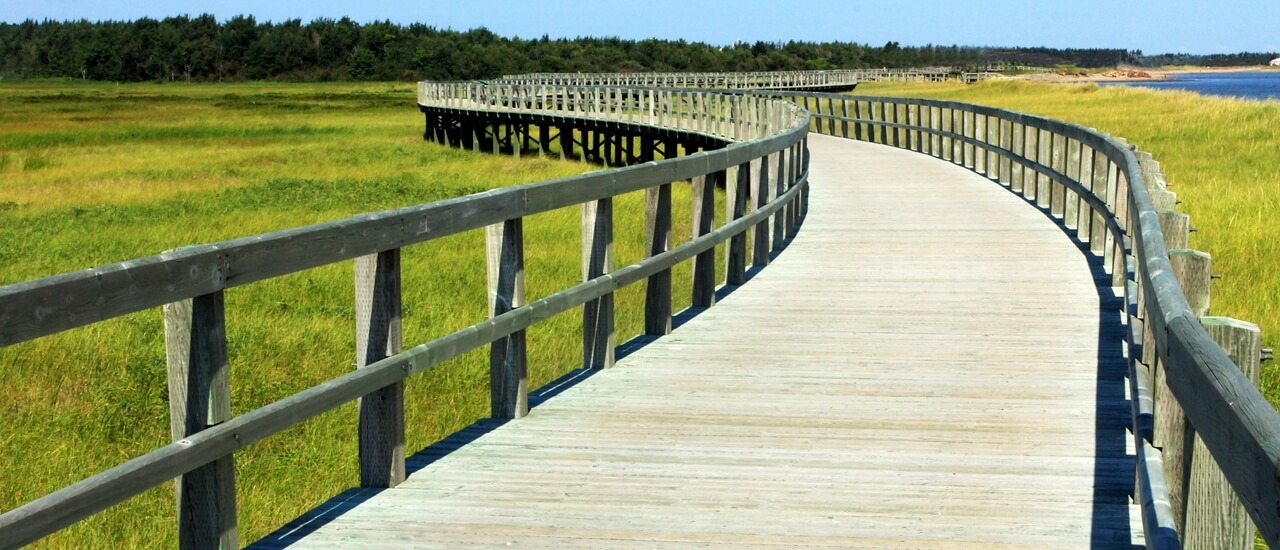 Marsh Boardwalk